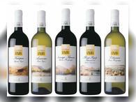 Как купить крымский виноградник