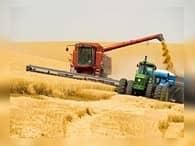 В России собрали хороший урожай зерна