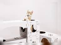 Картонные игровые городки для кошек