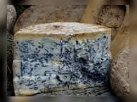 В России будут изготавливать сыр с плесенью
