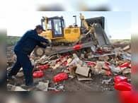 Зачем уничтожать санкционные продукты?