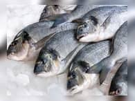 По итогам года спрос на рыбу упал на 10%
