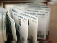 Размер реальной зарплаты в России упал на 8-9%