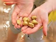 В 2015 году в России произвели больше золота