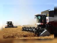 Донские аграрии собрали 10 млн тонн зерна и установили новый рекорд