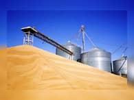 Аграрии России соберут рекордный урожай зерновых со времен СССР