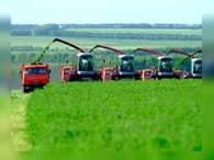 Аграрные отрасли российской экономики выходят из кризиса