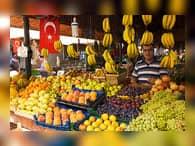 Россельхознадзор просит Турцию ускорить подготовку для отмены продэмбарго