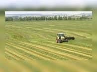 Российские аграрии намерены предотвратить скупку земель иностранцами