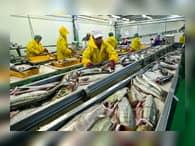 На Камчатке совместно с корейской компанией построят рыбзавод