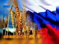 Россия может стать ведущим экспортером пшеницы в Венесуэлу – Рогозин