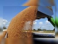 В РФ в 2017 году ожидается рост сельхозпроизводства на уровне последних лет
