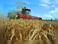 Регионам выделили субсидии для агропрома в размере 10 млрд рублей