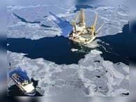 Арктический экономический совет в Санкт-Петербурге рассмотрит инвестиции в Арктику