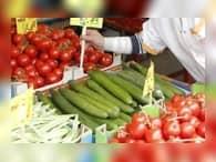 Россия потеряла 1,5 млрд долларов из-за «помидорной войны» с Турцией