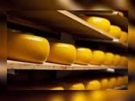 Россельхознадзор ограничил поставки молочной продукции из Белоруссии