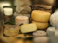 В Нижегородской области наладят выпуск итальянских сыров