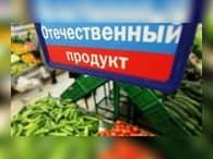 Проекты импортозамещения к 2020 году принесут 500 млрд руб