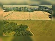 Для продукции дальневосточных гектаров создадут торговые места