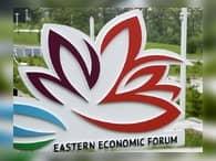 Объем заключенных на ВЭФ соглашений составил около 2,5 трлн рублей