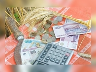 На создание и модернизацию объектов АПК увеличена субсидия