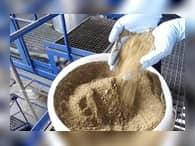 Минсельхоз предлагает ограничить импорт мясокостной муки