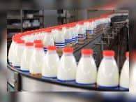 В России выявили около 4% фальсификата молочных продуктов - Роспотребнадзор