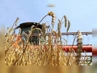 Аграрии Дона выиграли Гран-при и получат свыше 5 млрд рублей инвестиций