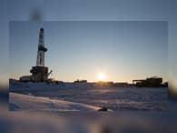 В ДВФУ создали новый метод возведения ледовых островов для буровых установок