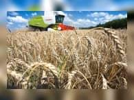 Россия захватывает сельскохозяйственный рынок мира
