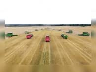 Россия демонстрирует потенциал аграрной сверхдержавы