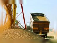 Экспорт российского зерна не снизится из-за ЧМ-2018
