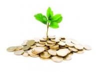 Новое ведомство: агентство по привлечению инвестиций