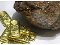 Акции ОАО «Полюс Золото» упали на фоне роста цен на драгоценный металл