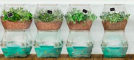 Гидропонные системы для выращивания продуктов дома