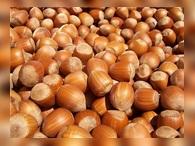 МЭР: Россия может экспортировать ягоды и орехи
