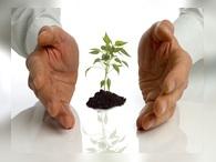 Малый бизнес поддержат федеральными дотациями